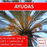 AYUDAS-PALMERAS-001